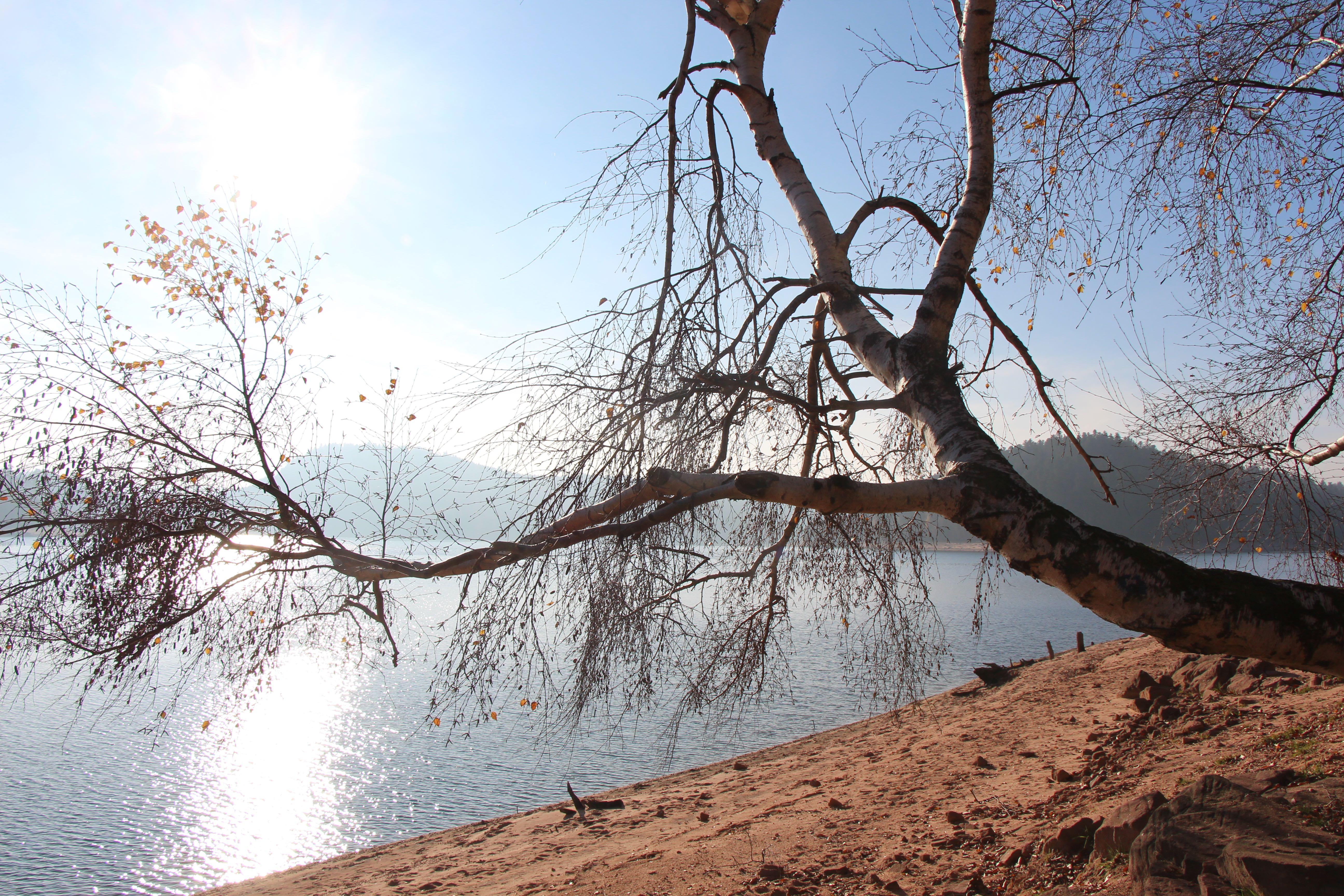 lac de pierre percée (54)